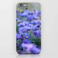 iPhone & iPod Case featuring Sea of Asters by Katie Kirkland Photography