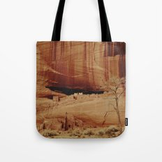White House Ruins Tote Bag