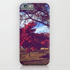 Fall My Way | Red iPhone 6 Slim Case