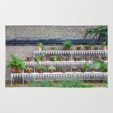 Pots and plants Rug