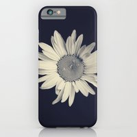 iPhone Cases featuring Daisy  by Marianne LoMonaco