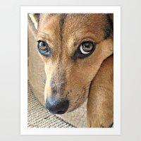 Dog Portrait Art Print