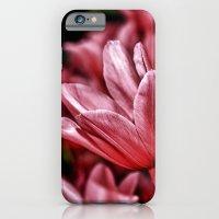 Pink Tulips iPhone 6 Slim Case
