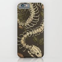 skeleton iPhone & iPod Cases featuring Snake Skeleton by Jessica Roux