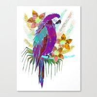 Parrot Elua  - Style A Canvas Print