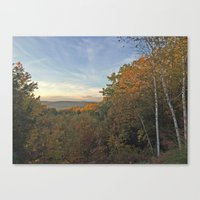 Fall Clearing Canvas Print