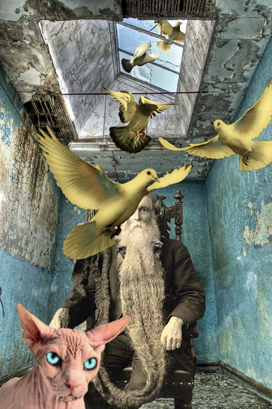 PAUL AND THE PIGEONS Art Print