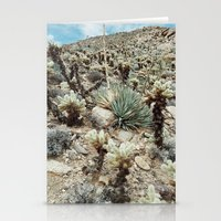 Mountain Cholla Stationery Cards