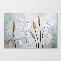 Lunaria Canvas Print