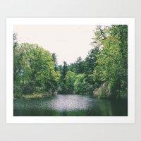 Maudslay Pond Art Print