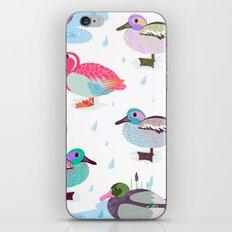 Nice Weather For Ducks iPhone & iPod Skin