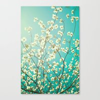 The Dogwoods Are Bloomin… Canvas Print