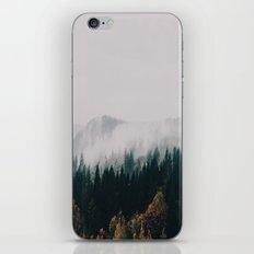Forest Fog iPhone & iPod Skin