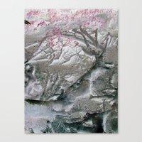 root upturn Canvas Print