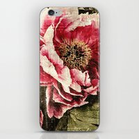 Tryst iPhone & iPod Skin