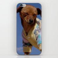 Hot dog iPhone & iPod Skin