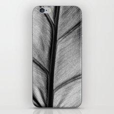 silver leaf iPhone & iPod Skin