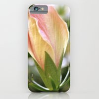 iPhone & iPod Case featuring faded bulb  by Cindy Munroe Photography