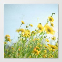Lie Back and Think of England Canvas Print