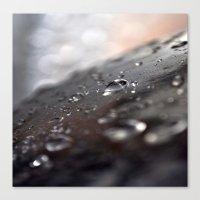 drops water Canvas Print