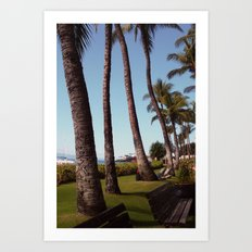 Palms Create Lines Art Print