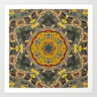 Kangaroo Paw Kaleidoscop… Art Print