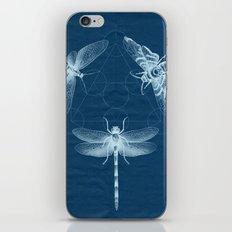 X-RAY Insect Magic iPhone & iPod Skin
