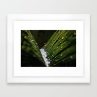 Snowy Palms Framed Art Print