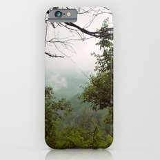 Smoky Mountains Tennessee Tree Color Photograph iPhone 6s Slim Case