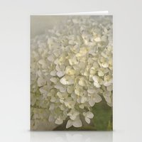 White Hydrangea Stationery Cards