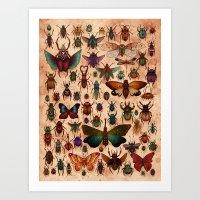 Love Bugs Art Print