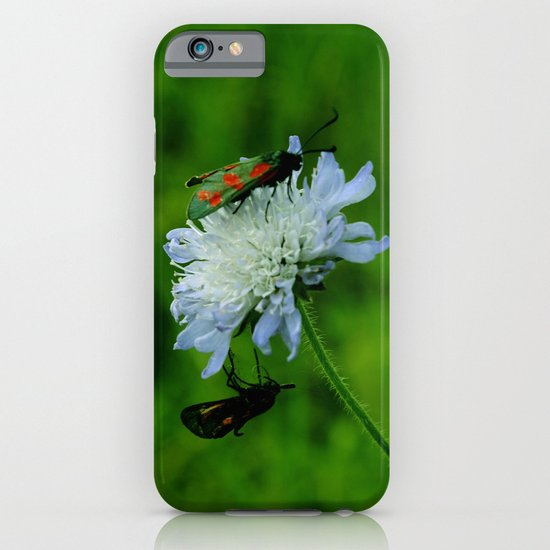 Lovebugs iPhone & iPod Case