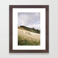 Trees on a sunlit hillside. Upper Derwent Valley, Derbyshire, UK. Framed Art Print