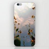 MAUA iPhone & iPod Skin