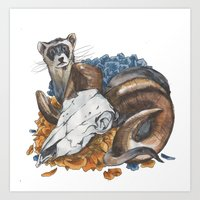 ferret and skull Art Print