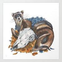 Ferret And Skull Art Print