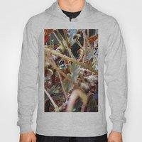 Dragon Fight    [PLANTS]… Hoody