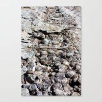 Dinosaur Skin Canvas Print