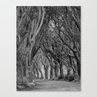 The Trees, Norfolk Canvas Print