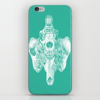 Around the Coyote - Teal iPhone & iPod Skin