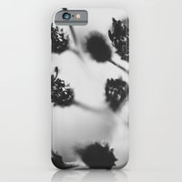 iPhone & iPod Case featuring summer contrast by rachel kelso
