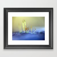 Capillary Thread-moss 30… Framed Art Print