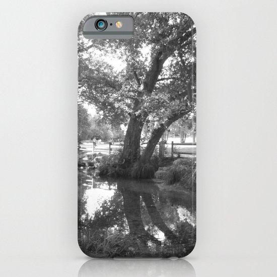 Wishing tree  iPhone & iPod Case