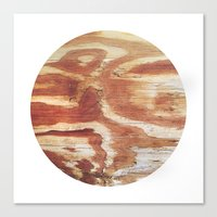 Planetary Bodies - Wood Canvas Print