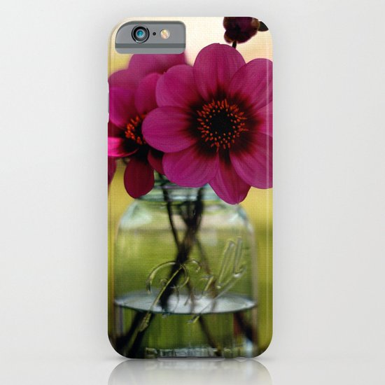 Dahlias In A Blue Jar iPhone & iPod Case