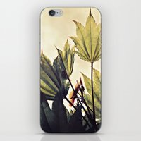 full moon maple no.1 iPhone & iPod Skin
