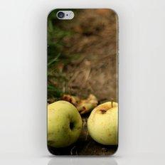 Fallen Apples iPhone & iPod Skin