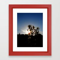Sand Lilly Sunset Framed Art Print