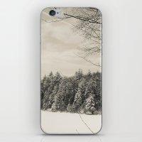 Peaceful Winter Snows  iPhone & iPod Skin