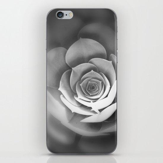 Sempervivum iPhone & iPod Skin